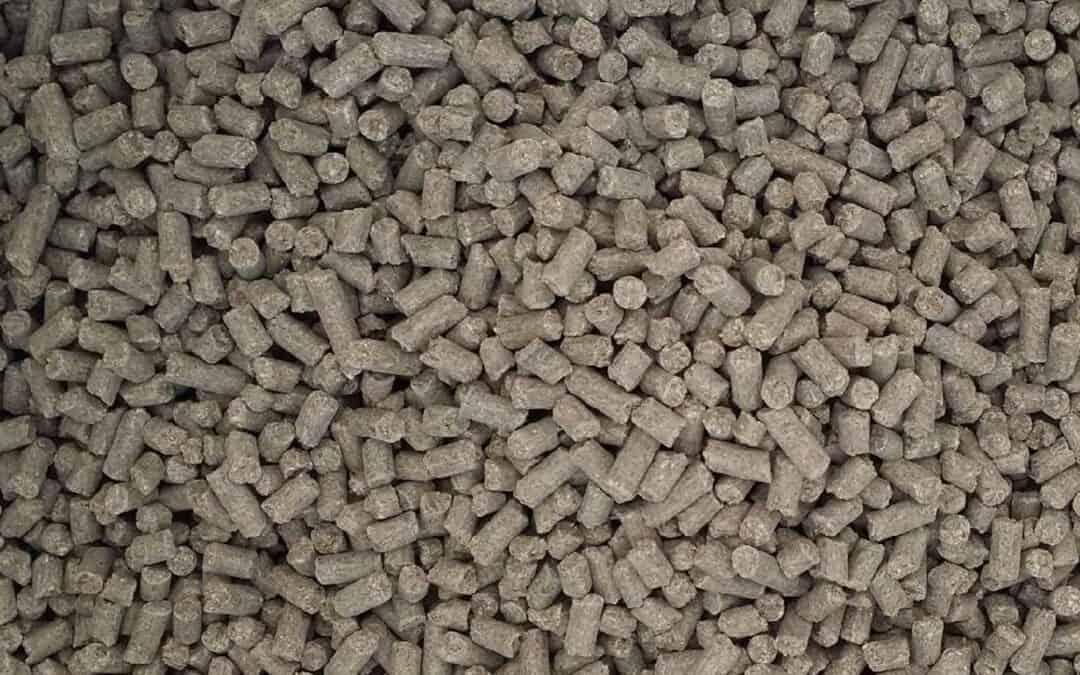 Mineraler till häst – en viktig komponent i foderstaten